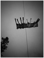Going up. (manganlundin) Tags: ski skiing fjällen sverige sweden vemdalen vemdalsskalet blackandwhite bw monochrome olympus nature alpine scenery lift skilift