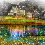 Lilly Pond thumbnail