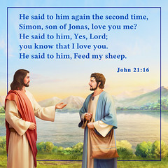 "The Lord Jesus Is My Savior | God's Word ""The True Story Behind Work in the Age of Redemption"" (monicareidlee) Tags: christian church god jesus cross peter ferry seaof​​galilee theageofredemption"