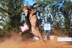 5º Espora Solidária de Quaraí (Eduardo Amorim) Tags: gaúcho gaúchos gaucho gauchos cavalos caballos horses chevaux cavalli pferde caballo horse cheval cavallo pferd pampa campanha fronteira quaraí riograndedosul brésil brasil sudamérica südamerika suramérica américadosul southamerica amériquedusud americameridionale américadelsur americadelsud cavalo 馬 حصان 马 лошадь ঘোড়া 말 סוס ม้า häst hest hevonen άλογο brazil eduardoamorim gineteada jineteada