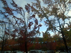 DSC04041 (classroomcamera) Tags: outside outdoors tree trees treetop treetops fall autumn car cars flag flags wind windy day daytime afternoon evening dark sky blue green