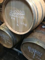 IMG_3629 (burde73) Tags: vietti barolo castiglione falletto villero langhe tasting wine nebbiolo cantina cellar
