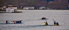 Rem a Banyoles / Rowing in Banyoles (SBA73) Tags: catalunya catalonia catalogne catalogna katalonien cataluña каталония 加泰罗尼亚 カタルーニャ州 banyoles estanydebanyoles pladelestany estany lake canoa barca boat canoe row rem remar remo remos rowing training sport