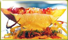 Salat aus Blutorange und Limette, Mmm!! (magritknapp) Tags: macromondaysandcitrus 255x232inch limette zestern spiegel bloodorange limeester mirror miroirentilleul espelho de zest laranjadesangue specchio sanguearancione tiglioestere bloed oranje limester lime spegel blomstorange spejl lusterko pomarańczowe zwierciadło limforowe