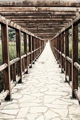 puente a Guatemala (Sergio_Pérez) Tags: canoneosrebelt6 1300d 18–55mm chiapas lagointernacional guatemala