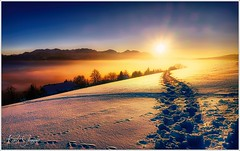 Spuren im Schnee (Karl Glinsner) Tags: landschaft landscape österreich austria oberösterreich upperaustria berge gebirge mountains salzkammergut schnee snow winter sonnenuntergang sunset gmundnerberg gmunden