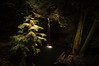 Waterfall (Dragonslayer8888) Tags: waterfall hiking water nature beauty explore green trees long exposure