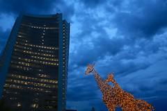 the giraffes and the tower (peet-astn) Tags: pwc tower midrand southafrica johannesburg giraffe mallofafrica clouds dusk