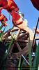 P1430894 (bebsantandrea) Tags: viareggio carnevale lungomare versilia carri maschere corso 11 febbraio 2018 balli gruppi coreografie concorso ironia satira politica giganti sfilata parata miss italia alice rachele arlanch costumi festa persone