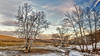 8R9A0786-87Ptzl1scBbTLGER2 (ultravivid imaging) Tags: ultravividimaging ultra vivid imaging ultravivid colorful canon canon5dm3 clouds winter scenic sky snow sunsetclouds twilight trees creek frozen fields farm panoramic pennsylvania pa landscape lateafternoon