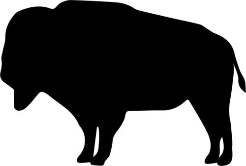 black buffalo