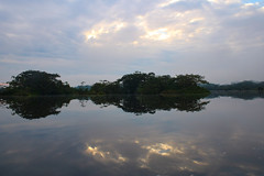 Calming Reflections (benjamin.t.kemp) Tags: nature trees landscape calm reflection