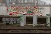 Enta / 4ce (Alex Ellison) Tags: 4ce force enta westlondon urban trackside railway graffiti graff boobs