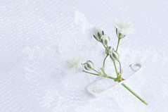 50/365: Stuck on you (judi may) Tags: 365the2018edition 3652018 day50365 19feb18 macro macromonday fasteners macromondays highkey whiteonwhite white gypsophila flowers tiny tinyflowers safetypin lace tulle green stem canon7d
