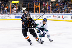 "Kansas City Mavericks vs. Florida Everblades, February 18, 2018, Silverstein Eye Centers Arena, Independence, Missouri.  Photo: © John Howe / Howe Creative Photography, all rights reserved 2018 • <a style=""font-size:0.8em;"" href=""http://www.flickr.com/photos/134016632@N02/39491134185/"" target=""_blank"">View on Flickr</a>"