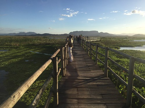 Palo Verde 201-CIENTEC