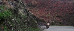 Winter Ride 2018 - 06 (Fabio MB) Tags: winter ride trip tonup café racer moto motorcycle cold mountain nature tracker bobber portugal road crew freedom escape