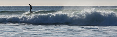 Long-board (D. Inscho) Tags: ucluelet canada bc pacificnorthwest vancouverisland wickaninnishbeach winter surfing