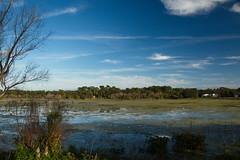 Ollie's Pond Park (sr667) Tags: olliespondpark florida usa us sigma canon 18250mmf3563dcos 18250mm