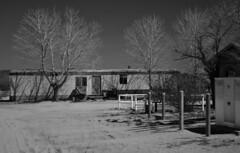OX Ranch #4 (fernside) Tags: mojave desert california oxranch ruin