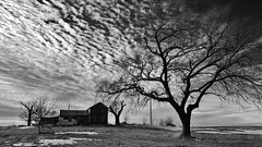 these are the end times.... (BillsExplorations) Tags: abandoned abandonedhouse abandonedfarm decay ruraldecay forgotten end old shuttered discarded trees clouds sky field abandonedillinois blackandwhite monochrome windfarm