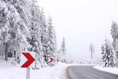 Winter Road (little.dorota) Tags: clouds fog magical frost frozen ice winter jdorota jdorotaphotography photography zakopane tatry bialka tatrzanska tall pines forest woods canon canon700d poland red white