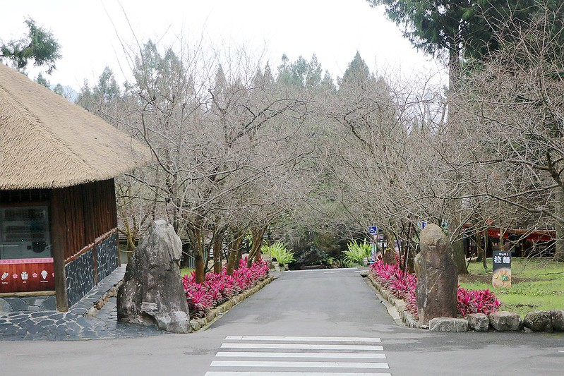 九族文化村146