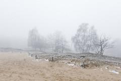 (MarcoBekk) Tags: marco bekk beck winter fog mist hamburg girl portrait landscape mood