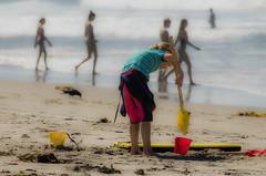 Sand Play (Kevin MG) Tags: zumabeach beach bucket child childhood children cute daytime girl girls kid kids little ocean outdoor pretty sand seagull shore shovels water young youth zuma