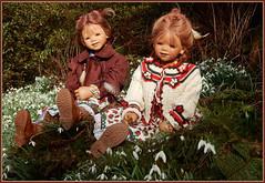 Anne-Moni und Tivi ... (Kindergartenkinder) Tags: schneeglöckchen kindergartenkinder annette himstedt dolls annemoni tivi