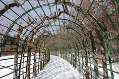 DSC08412 (kriD1973) Tags: europe europa deutschland germania allemagne germany bayern baviera bavaria ammergauer alpen schloss linderhof ludwigii ettal snow neve schnee neige