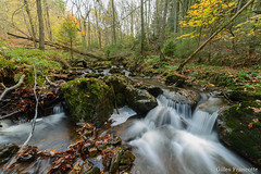 Waterfall (gillesfrancotte) Tags: 2017 amblève ardennes autumn aywaille chefna d800 nikon november outdoor quarreux stoumont automne cascade creek eau fall landscape longexposure nature novembre stream torrent water waterfall waterscape wallonie belgique be