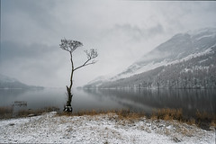 a touch of frost (akh1981) Tags: buttermere travel trees tranquil nikon nisi nature landscape lakedistrict lake longexposure outdoors manfrotto mountains moody mist cumbria clouds calm wideangle walking water reflections serene beautiful tree fells countryside district national park trust unesco fog misty sunrise muted waterreflections mirror tranquility calming