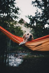 hang time by R A M A L A M ▲ S A M D O N G - ↟ instagram ↟