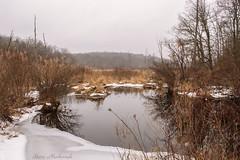 Waywayanda Winter_0181 (smack53) Tags: smack53 pond water reflections trees snow winter wintertime winterseason winterscenery wintry scenery scenic waywayandastatepark vernon newjersey nikon d100 nikond100
