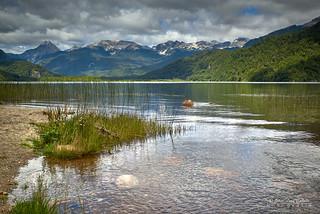 Lago Las Torres - Reserva Nac. Lago Las Torres (Patagonia Chile)