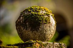 Mossy (sugob05) Tags: stones steine 5d mark2 mark ii tamron 70200 28 moos mossy herdern bewachsen grün alt verwittert
