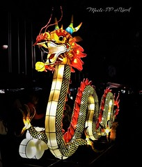 390. CNY 2018: Dragon Lantern (Meili-PP Hua 2) Tags: chinesenewyear chinesenewyeardog2018 festival lanterns night nightphotography light lanternfestival dragons animallanterns glow