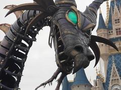 Dragon (DisneyGirl13!) Tags: walt disney world waltdisneyworld wdw festival fantasy festivaloffantasy