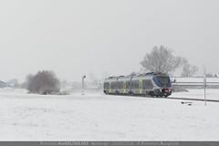Neve Biellese 2... (EuroStar483) Tags: treni ferrovie neve nevicata gelo bianco minuetto diesel livrea nuova blu blue train md 053 md053 md53 aln501 aln502 ln22 aln501053 aln502053 aln501502 aln501502053 linea secondaria novarabiella biellanovara alberi cartello passaggio livello avviso pl segnale