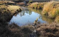 2128 Bruxner Way, Tenterfield NSW