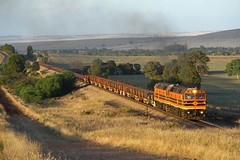 Rail for the Inland (Aussie foamer) Tags: 2207 22class 42207 clyde emd nswgr newsouthwalesgovernmentrailways sra staterailauthorityofnewsouthwales freightrail freightcorp asr arg australiansouthernrailroad australianrailroadgroup gwa geneseewyomingaustralia artc railtrain gladstone caltowie southaustralia train railway locomotive rpau22class rpau22class2207