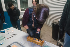 Tagging Fish in a Cradle (FISH-BIO) Tags: training fisheriestraining taggingfish fish tag floytag disk tagpeterson tagfish cradlepit tagpit