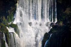 Contemplating (guimadaleno) Tags: iguaçu iguazu falls waterfall cataratas brasil brazil nature wonders amazing breathtaking creation jehovah natureza