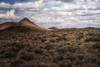 a surprise meeting... (Alvin Harp) Tags: hare jackrabbit mountains desertlandscape cloudsstormssunsetssunrises altus95 nevada schurz sonya7rii fe2470mmf28gm beautifulclouds september 2017 alvinharp
