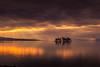 sunset 5051 (junjiaoyama) Tags: japan sunset sky light cloud weather landscape orange contrast color bright lake island water nature winter calmness reflection rays beams