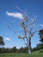 Ferment (procrast8) Tags: kansas city mo missouri nelson atkins art museum ferment sculpture roxy paine