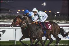 IMG_7179 copy (Services 33159455) Tags: qatar doha horse racing qrec emir horseracing raytohgraphy