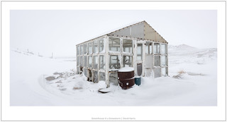 Greenhouse in a Snowstorm