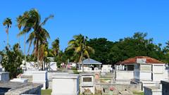 Key West (Florida) Trip 2017 7425Ri 9x16 (edgarandron - Busy!) Tags: florida keys floridakeys keywest cemetery cemeteries keywestcemetery